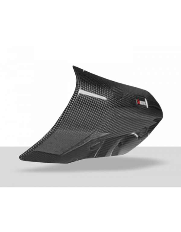 Protection carbone Akrapovic P-HSB10SO2