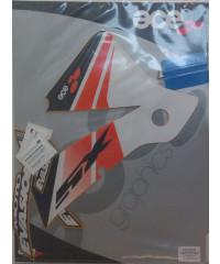Kit déco réservoir SX 2/4 TPS 2001-2004